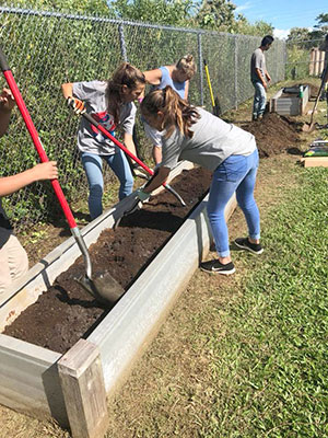 Staff and volunteers work on the Pono Garden at Keaau Elementary