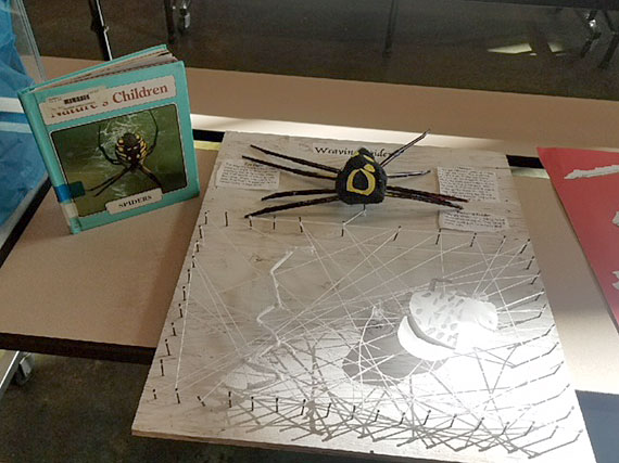 Spider book project