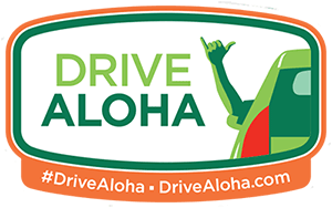 hawaii drivers ed log sheet