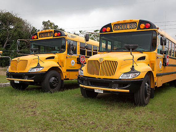 Photo of two school buses