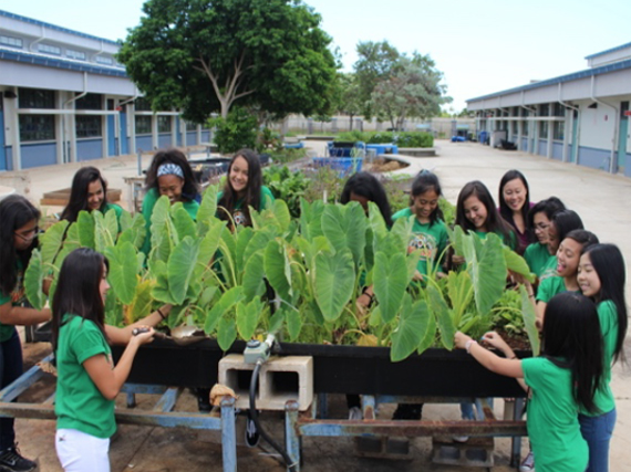 Ewa Makai Middle students tend to garden.
