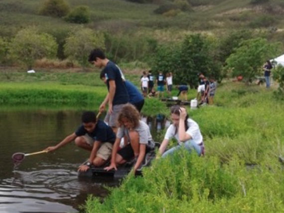 Students from Kailua Intermediate clean up Hamakua Marsh.